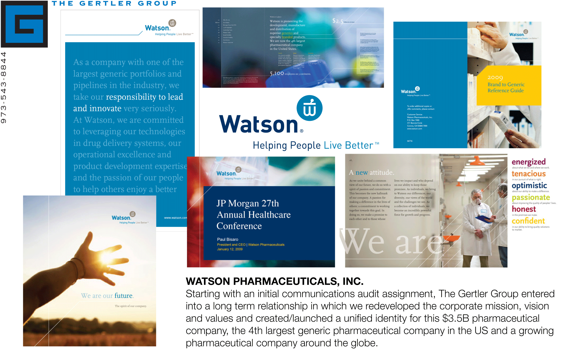 the vision and mission statement of watson pharmaceuticals Of terms like 'mission,' 'purpose,' 'values,' 'strategic intent,' but no-one has given me a satisfactory way of looking at vision that will help me to sort out this morass of words and set a coherent vision for my company.